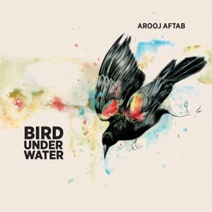 "Cover of Arooj Aftab ""Bird Under Water"""